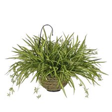 Artificial Spider Hanging Plant in Basket