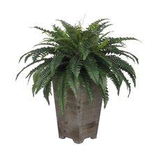 Artificial Fern Floor Plant in Planter