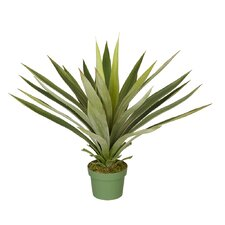 Artificial Large Yucca Plant