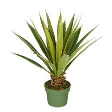 Artificial Spike Yucca Plant