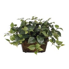 Artificial Philo Desk Top Plant in Decorative Vase