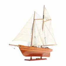 America Model Boat