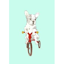 Tricycle French Bulldog Canvas Art