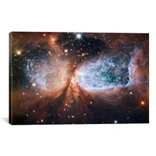 Astronomy and Space Celestial Snow Angel S106 Nebula (Hubble Space Telescope) Photographic Print on Canvas