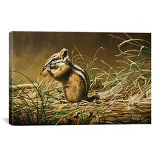 'Chipmunk' by Ron Parker Graphic Art on Canvas