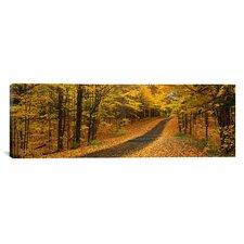 Panoramic Autumn Road, Emery Park, New York Photographic Print on Canvas
