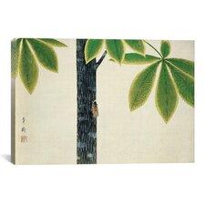 'Cicada' by Omoda Seiju Painting Print on Canvas