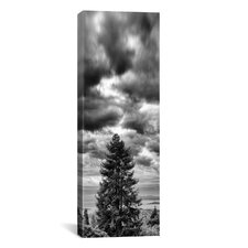 'Xmas Day' by Geoffrey Ansel Agrons Photographic Print on Canvas