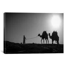 'Camel Trip, Jordan' by Dan Ballard Photographic Print on Canvas