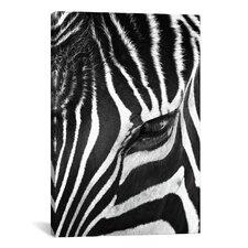 'Zebra Stare' by Bob Larson Photographic Print on Canvas