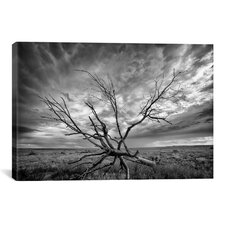 'Colorado Storm' by Dan Ballard Photographic Print on Canvas