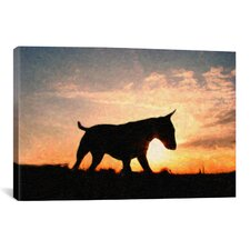'English Bull Terrier' by Michael Tompsett Photographic Print on Canvas
