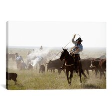 'Heeler' by Dan Ballard Photographic Print on Canvas