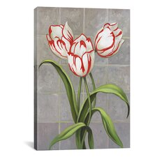 'Red-Striped Tulips' by John Zaccheo Graphic Art on Canvas