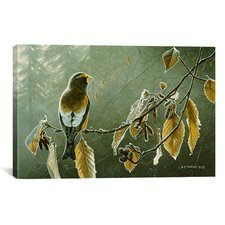 Frosty Alder by Ron Parker Painting Print on Canvas