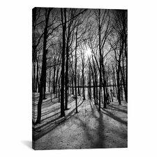 Scenic Forest Ridges Moraine Photographic Print on Canvas