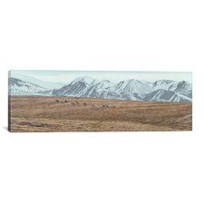 'Northern Skyline - Caribou' by Ron Parker Photographic Print on Canvas