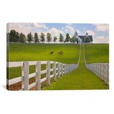 'Manchester Farm, Kentucky 08 - Color' by Monte Nagler Photographic Print on Canvas