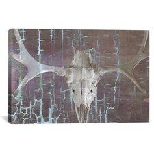 Canada Moose Skull 6 Graphic Art on Canvas