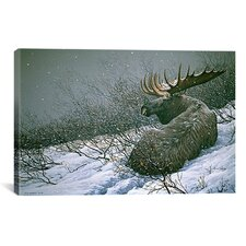 'Moose in the Brush' by Ron Parker Painting Print on Canvas