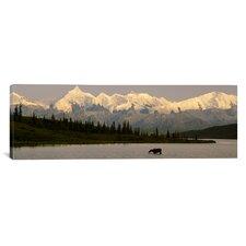 Panoramic Wonder Lake, Denali National Park, Alaska Photographic Print on Canvas