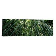Panoramic Arashiyama, Honshu, Japan Photographic Print on Canvas