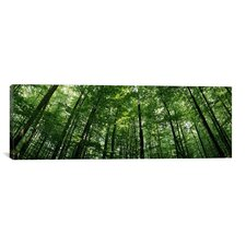Panoramic Baden-Wurttemberg, Germany Photographic Print on Canvas