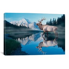 Reflections of Glacier by Gordon Semmens Photographic Print on Canvas