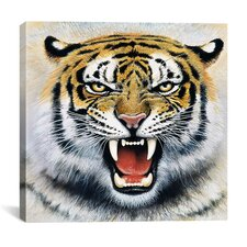 """""""Tiger"""" by Harro Maass Photographic Print on Canvas"""