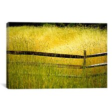 'Sea of Grass' by Bob Rouse Painting Print on Canvas