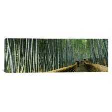 Panoramic Stepped Walkway Passing Through a Bamboo Forest, Honshu, Japan Photographic Print on Canvas