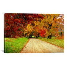 'Sparks Lane, TN' by J.D. McFarlan Photographic Print on Wrapped Canvas