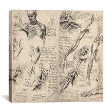 """Sketchbook Studies of Human Body Collage"" Canvas Wall Art by Leonardo da Vinci"