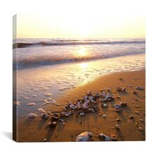 """Sunrise at the Ocean"" Canvas Wall Art by Carl Rosen"
