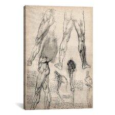 'Sketchbook Studies of Human Legs' by Leonardo da Vinci Painting Print on Canvas