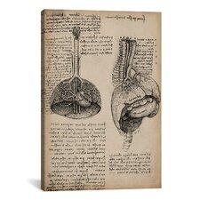 'Sketchbook Studies of Human Organs' by Leonardo da Vinci Painting Print on Canvas