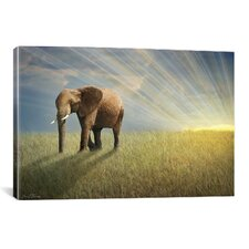 """Walk with the Light"" by Ben Heine Photographic Print on Canvas"