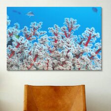 Marine and Ocean Red and White Gorgonian Coral Photographic Print on Canvas