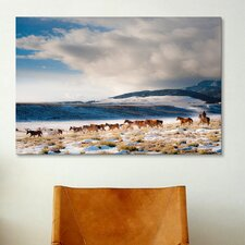 'Heading Home' by Dan Ballard Photographic Print on Canvas