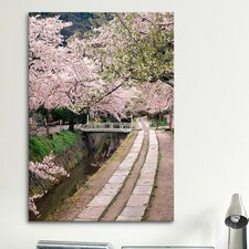 'Governor's Walk' by Monte Nagler Photographic Print on Canvas