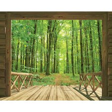 View Woodland Forest Wall Mural