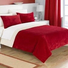 Evie 2 Piece Twin XL Comforter Set