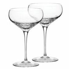Sequin Champagne Flute (Set of 2)