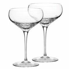 Sequin Champagne Flute (Set of 2)
