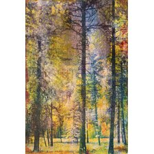 Walk in the Woods Graphic Art on Wrapped Canvas