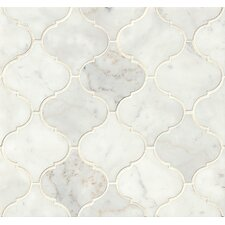Honed Marble Mosaic Tile in White Carrara