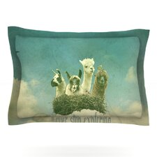 Never Stop Exploring by Monika Strigel Pillow Sham