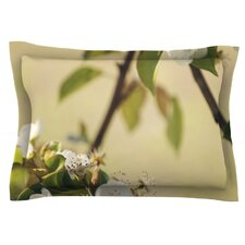 Pear Blossom by Catherine McDonald Pillow Sham