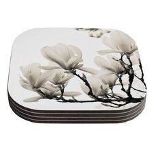 Magnolia Blossoms by Iris Lehnhardt White Floral Coaster (Set of 4)