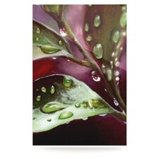 April Showers by Lydia Martin Photographic Print Plaque
